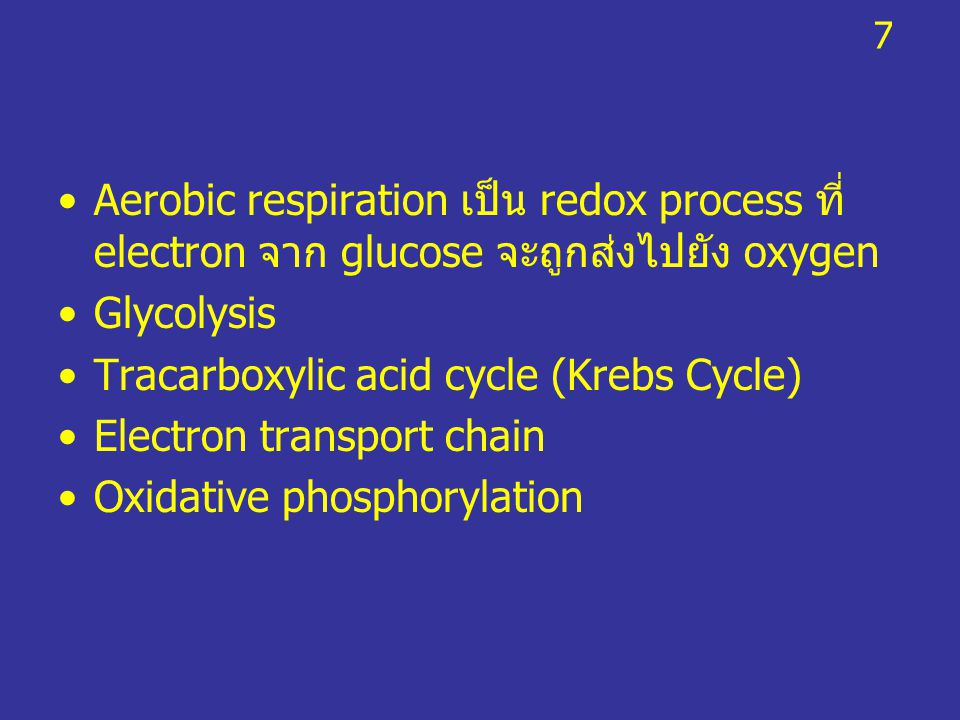 Tracarboxylic acid cycle (Krebs Cycle) Electron transport chain