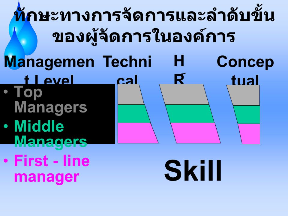 ทักษะทางการจัดการและลำดับขั้นของผู้จัดการในองค์การ