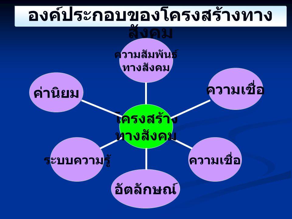 องค์ประกอบของโครงสร้างทางสังคม