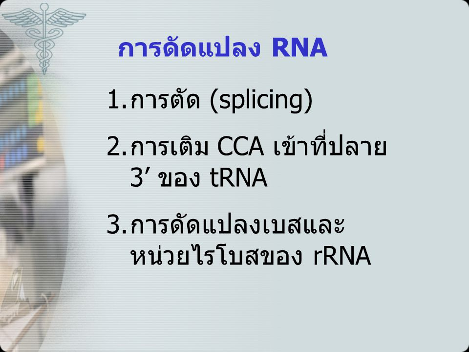 การดัดแปลง RNA การตัด (splicing) การเติม CCA เข้าที่ปลาย 3' ของ tRNA.