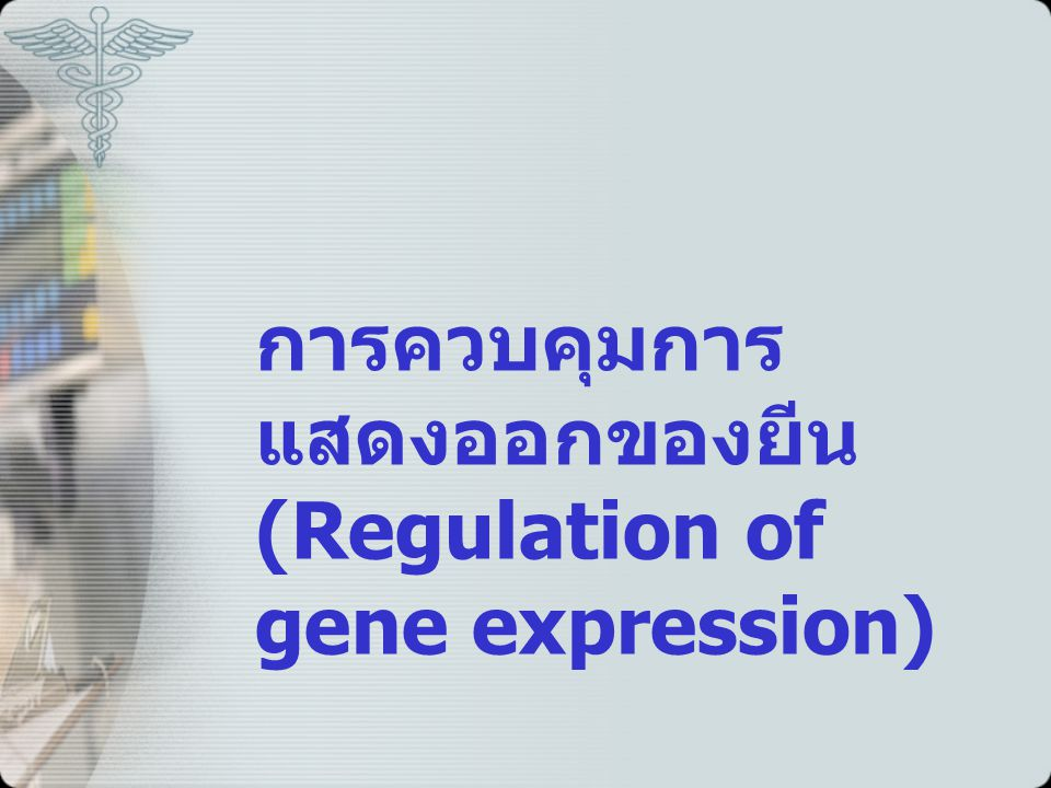 การควบคุมการแสดงออกของยีน (Regulation of gene expression)
