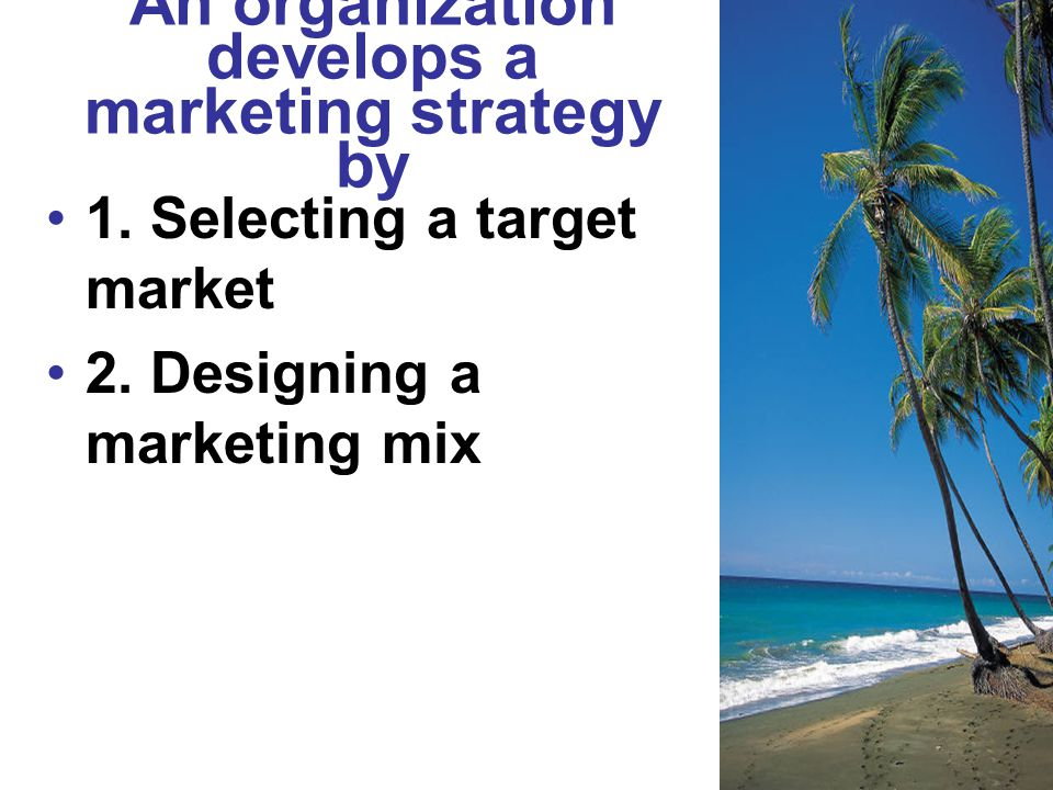 An organization develops a marketing strategy by