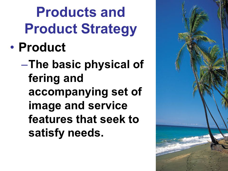 Products and Product Strategy