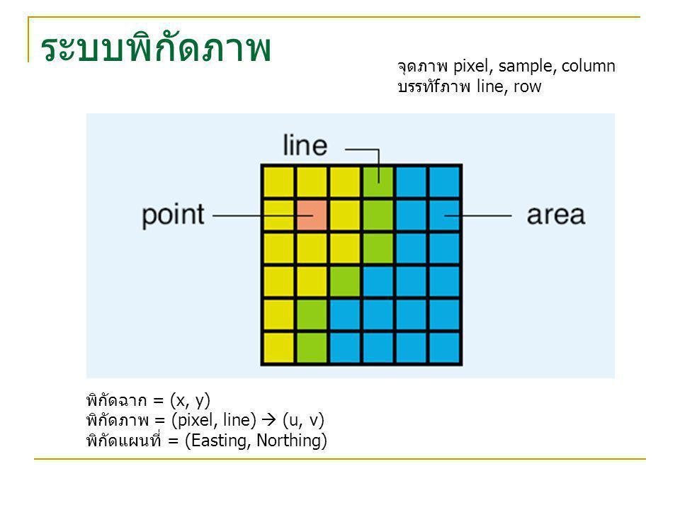 ระบบพิกัดภาพ จุดภาพ pixel, sample, column บรรทัfภาพ line, row