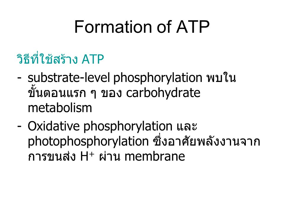 Formation of ATP วิธีที่ใช้สร้าง ATP