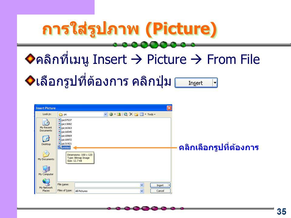 การใส่รูปภาพ (Picture)