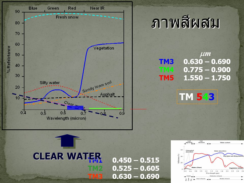 ภาพสีผสม TM 543 CLEAR WATER CLEAR WATER m TM3 0.630 – 0.690