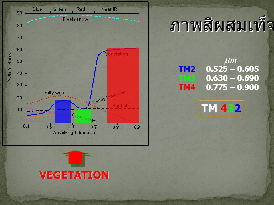 ภาพสีผสมเท็จ TM 432 VEGETATION VEGETATION m TM2 0.525 – 0.605