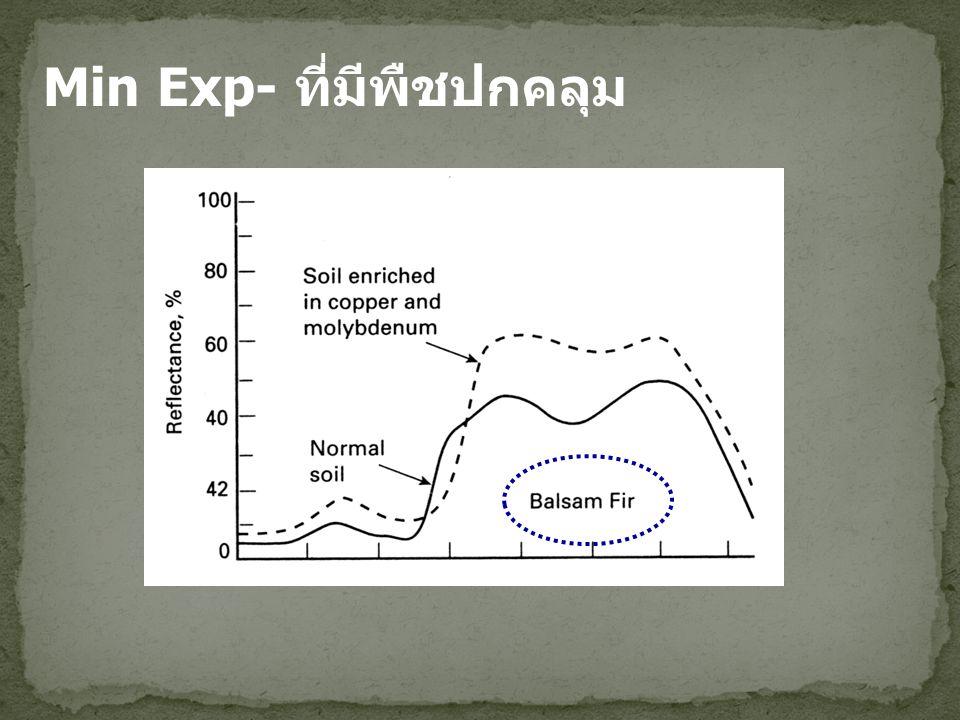 Min Exp- ที่มีพืชปกคลุม
