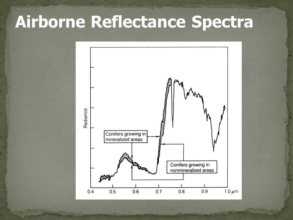 Airborne Reflectance Spectra