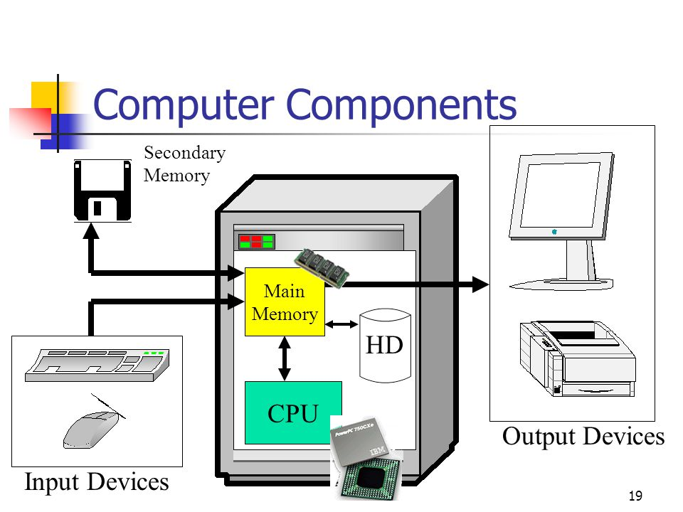 Computer Components HD CPU Output Devices Input Devices