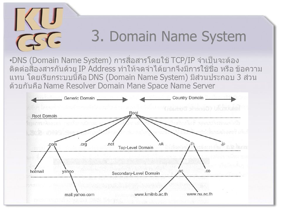 3. Domain Name System