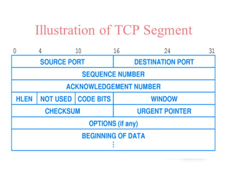 Illustration of TCP Segment
