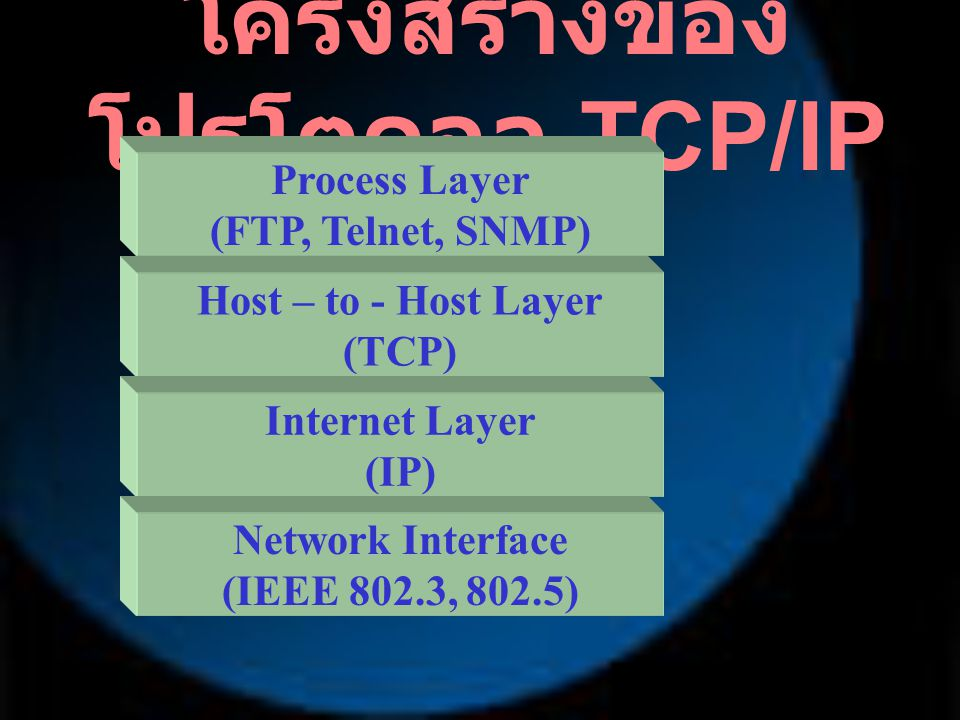 โครงสร้างของโปรโตคอล TCP/IP