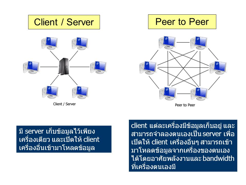 Client / Server Peer to Peer