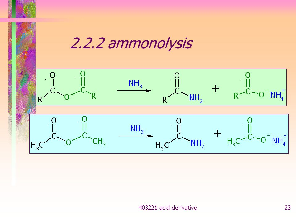 2.2.2 ammonolysis acid derivative