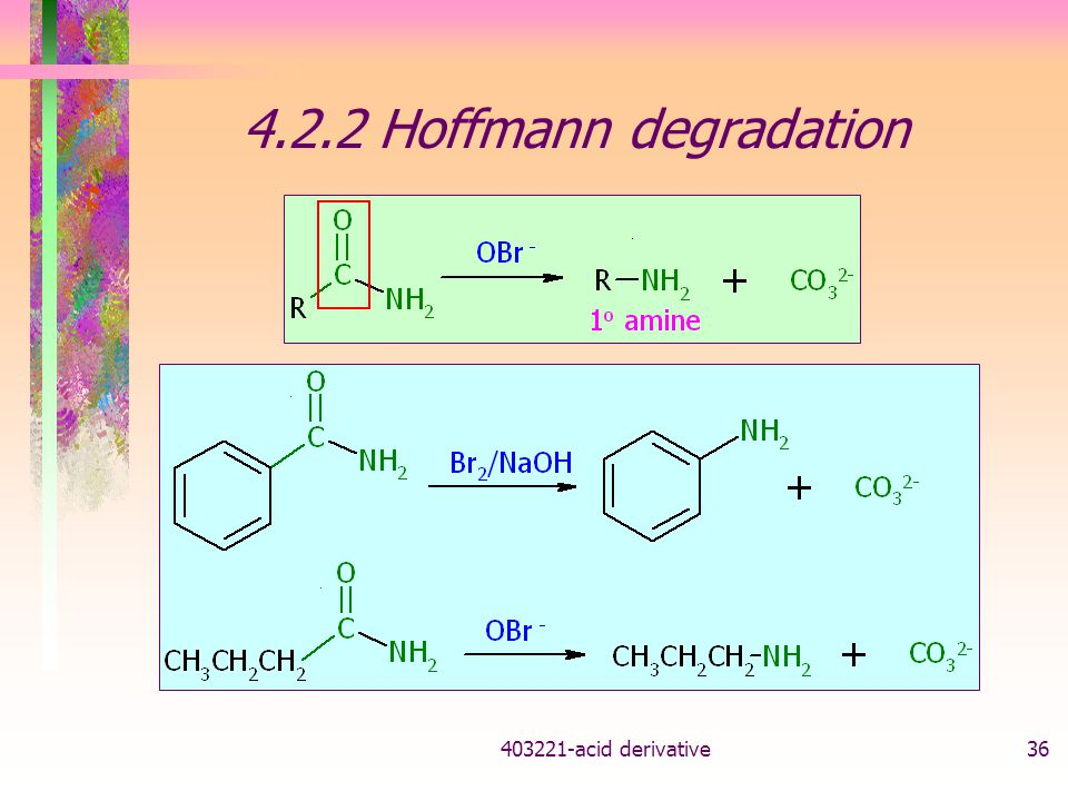 4.2.2 Hoffmann degradation acid derivative