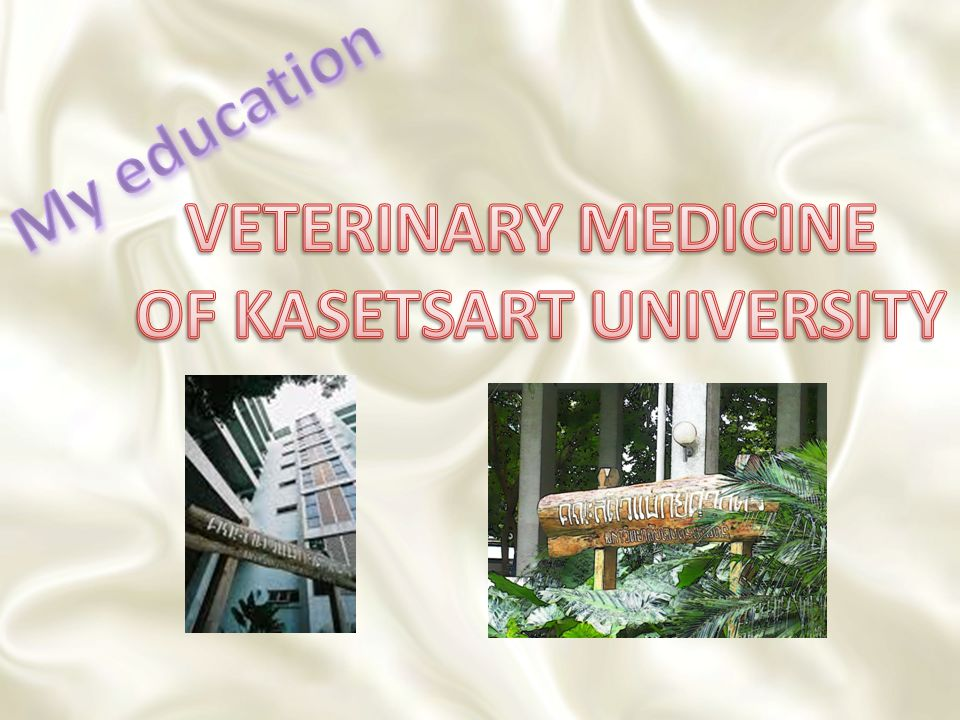 OF KASETSART UNIVERSITY