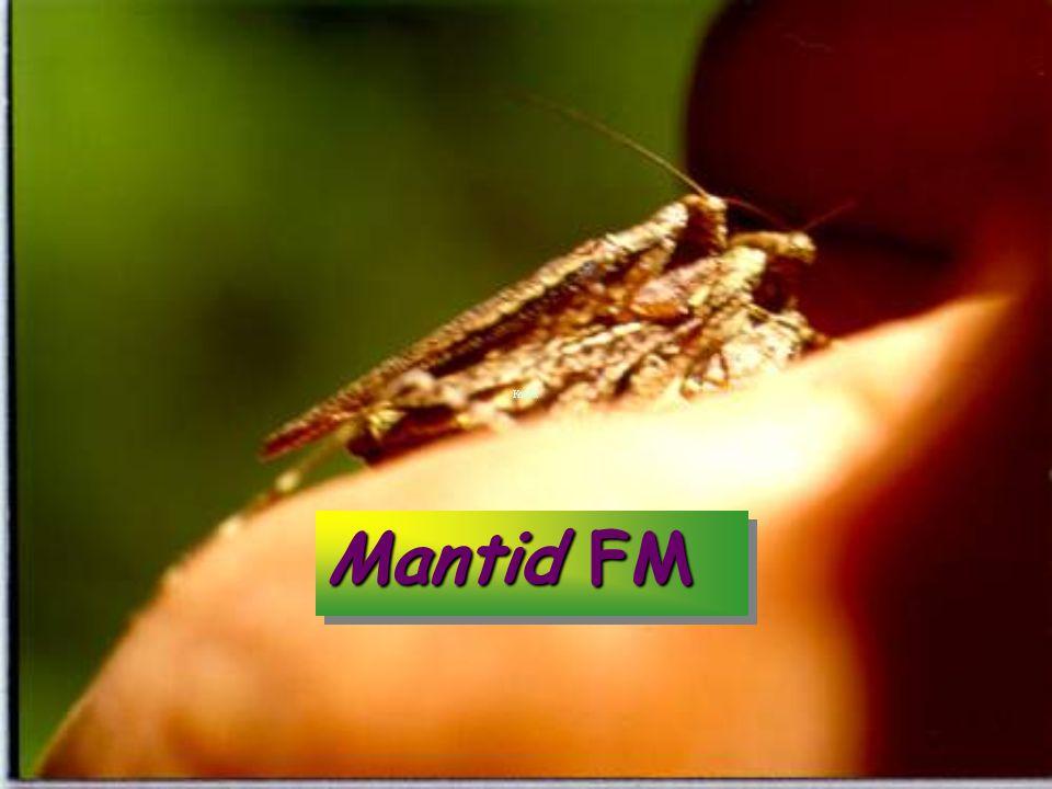 Mantid FM