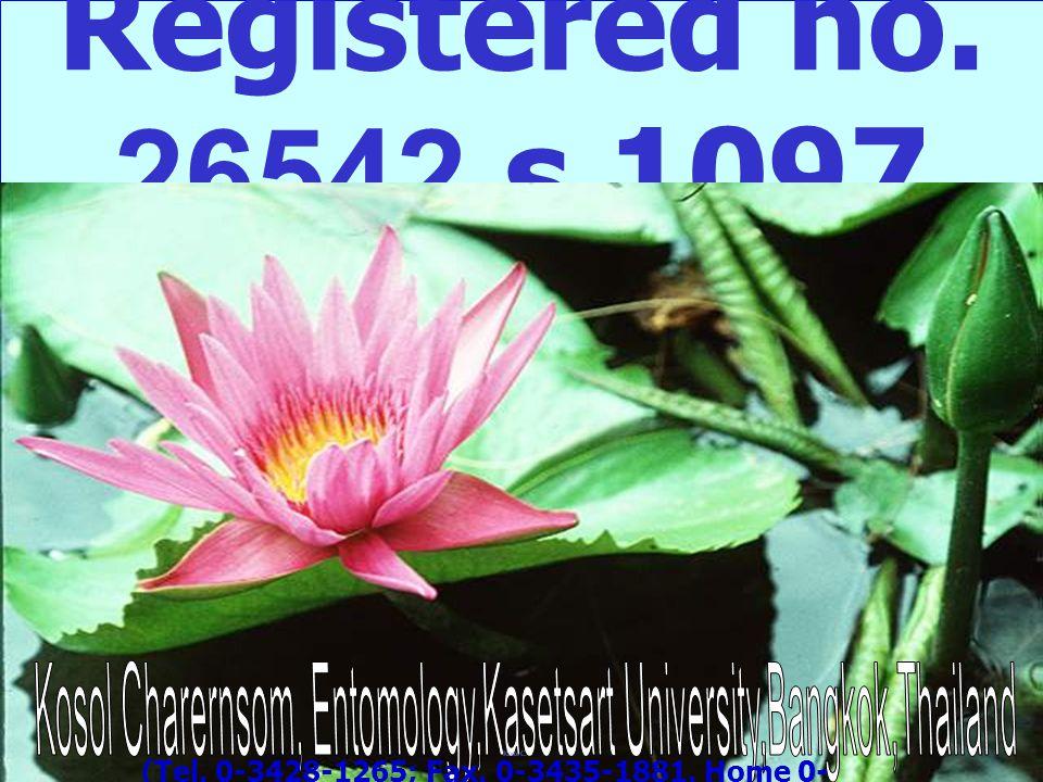 Kosol Charernsom, Entomology,Kasetsart University,Bangkok,Thailand