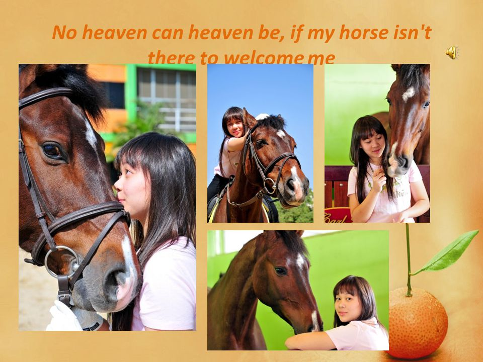No heaven can heaven be, if my horse isn t there to welcome me