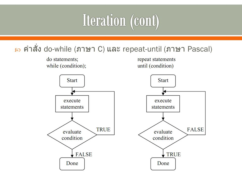 Iteration (cont) คำสั่ง do-while (ภาษา C) และ repeat-until (ภาษา Pascal)