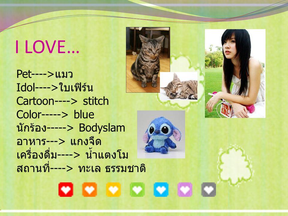 I LOVE… Pet---->แมว Idol---->ใบเฟิร์น Cartoon----> stitch