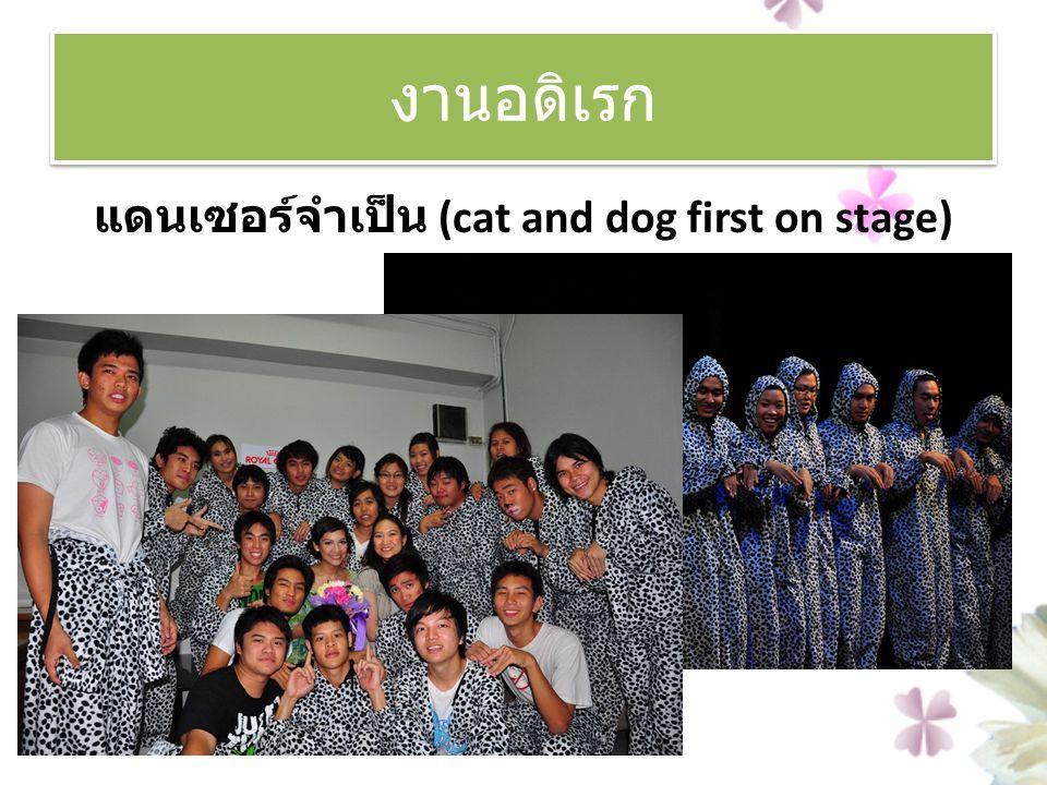 แดนเซอร์จำเป็น (cat and dog first on stage)