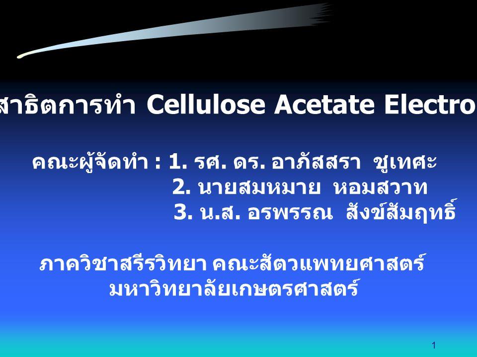 สไลด์การสาธิตการทำ Cellulose Acetate Electrophoresis
