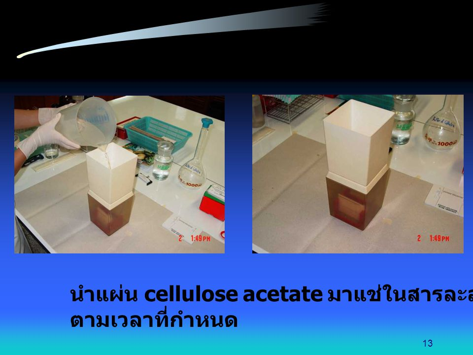 นำแผ่น cellulose acetate มาแช่ในสารละลายบัฟเฟอร์