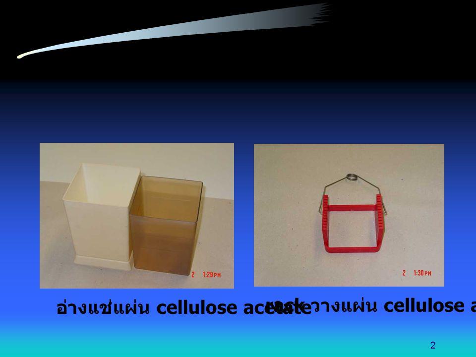 อ่างแช่แผ่น cellulose acetate