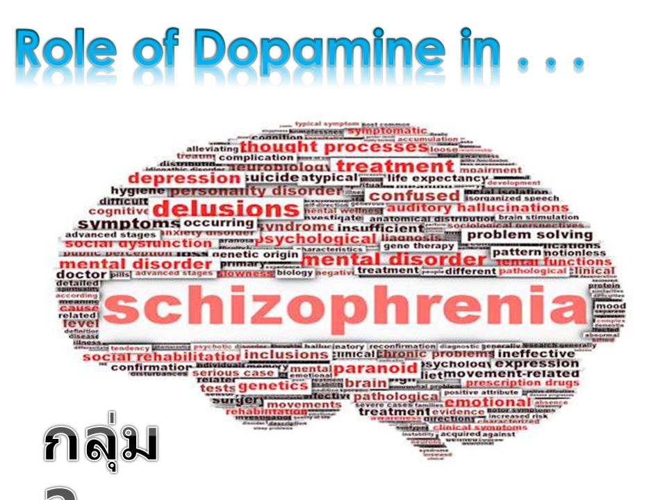 Role of Dopamine in . . . กลุ่ม 2