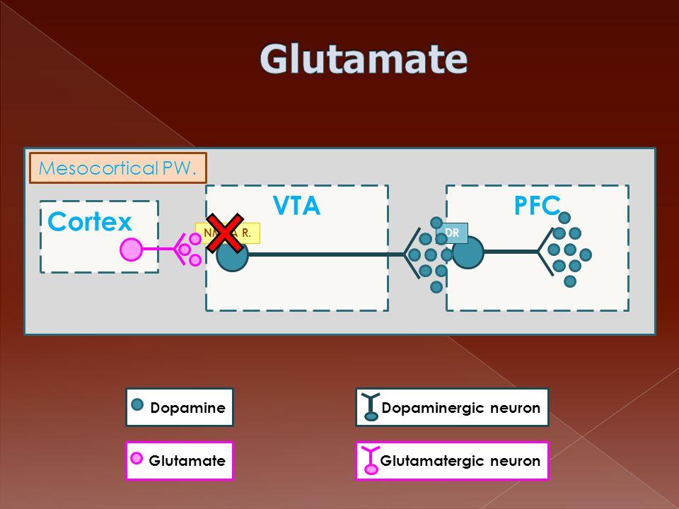 Glutamate Cortex VTA PFC Mesocortical PW. Dopamine Dopaminergic neuron