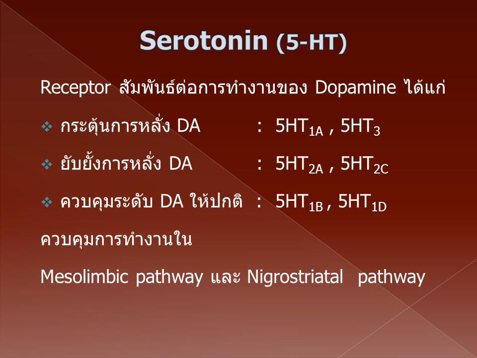 Serotonin (5-HT) Receptor สัมพันธ์ต่อการทำงานของ Dopamine ได้แก่