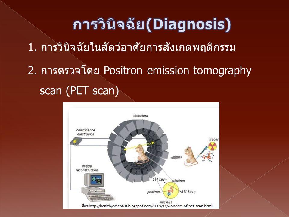 การวินิจฉัย(Diagnosis)