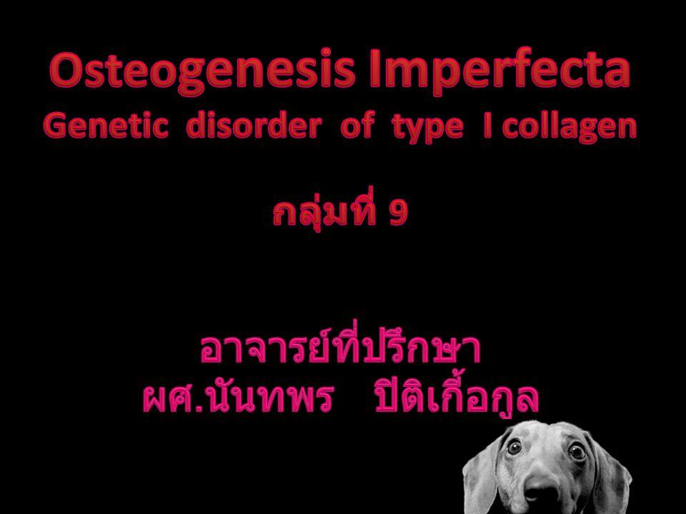 Osteogenesis Imperfecta Genetic disorder of type I collagen กลุ่มที่ 9 อาจารย์ที่ปรึกษา ผศ.นันทพร ปิติเกี้อกูล
