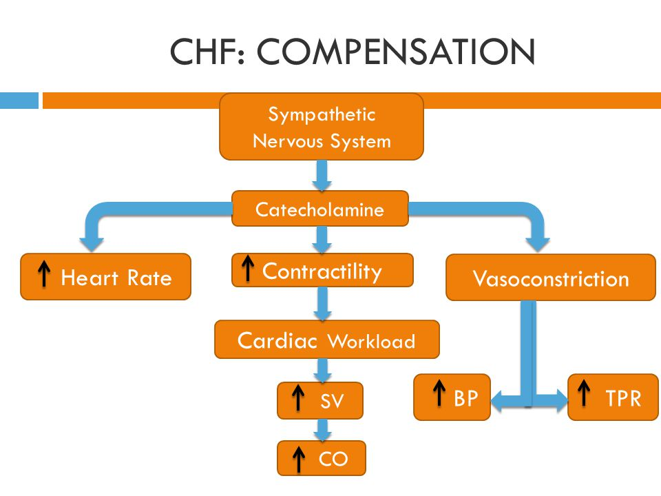 CHF: COMPENSATION Heart Rate Contractility Vasoconstriction