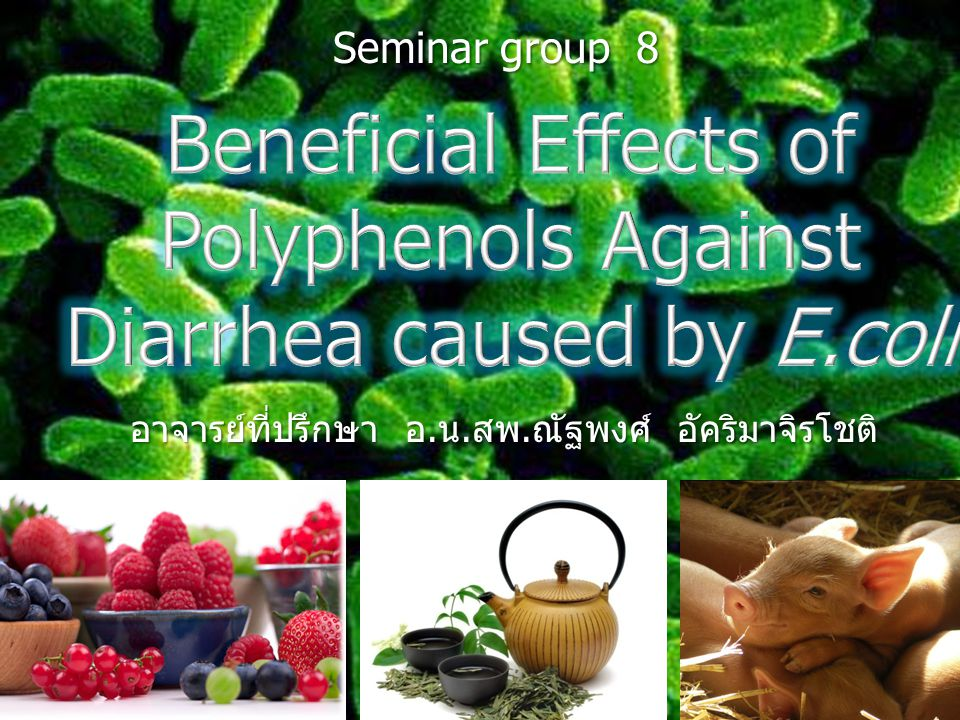 Beneficial Effects of Polyphenols Against Diarrhea caused by E.coli