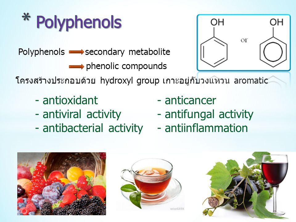 Polyphenols - antioxidant - anticancer