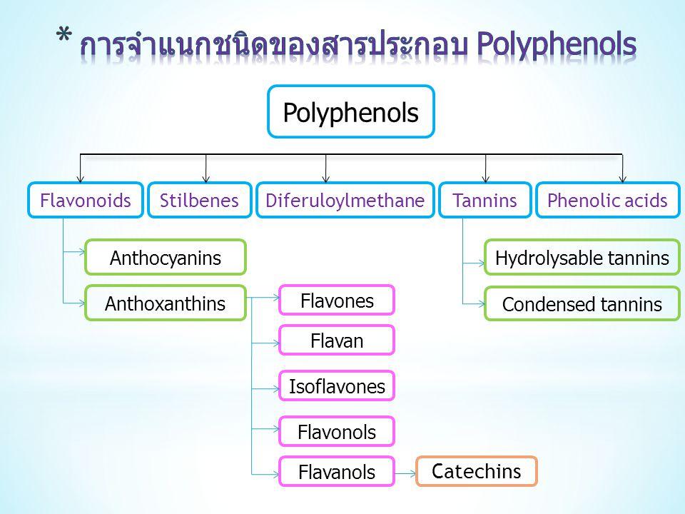 การจำแนกชนิดของสารประกอบ Polyphenols