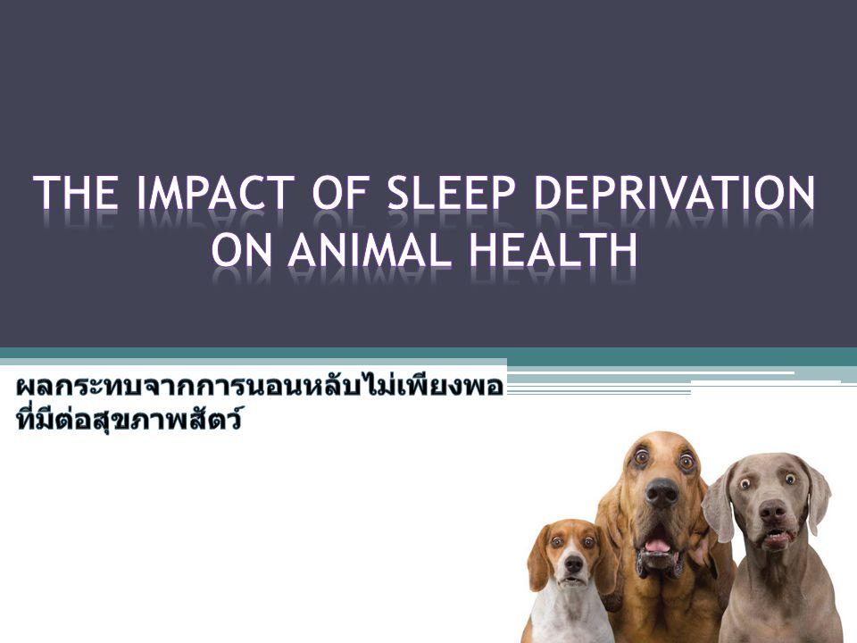The Impact of Sleep deprivation on Animal Health