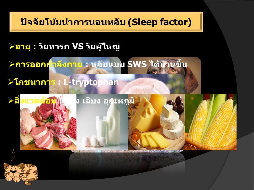 ปัจจัยโน้มนำการนอนหลับ (Sleep factor)