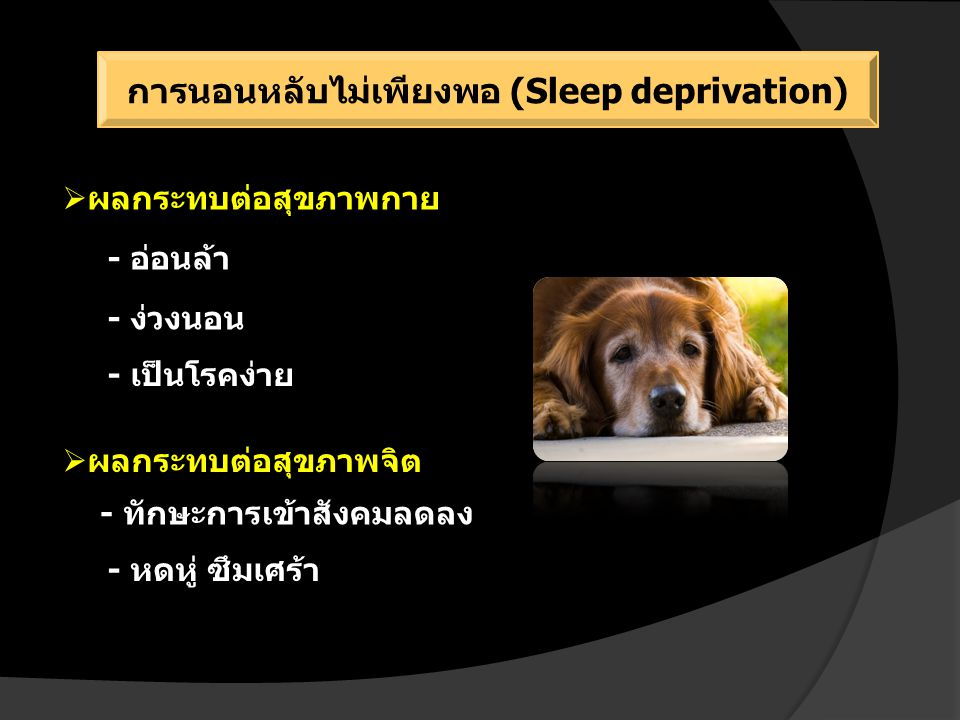 การนอนหลับไม่เพียงพอ (Sleep deprivation)