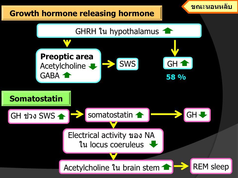 Growth hormone releasing hormone
