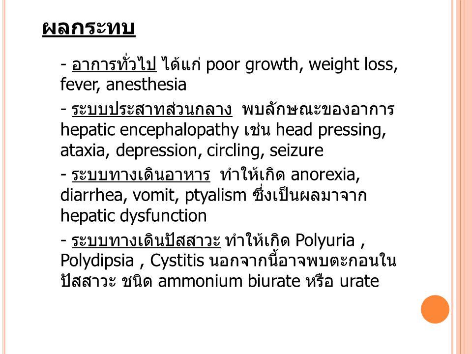 ผลกระทบ - อาการทั่วไป ได้แก่ poor growth, weight loss, fever, anesthesia.