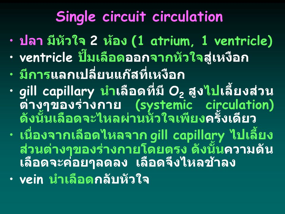 Single circuit circulation