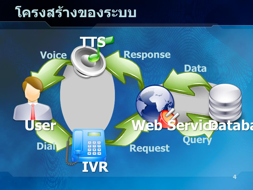 โครงสร้างของระบบ TTS User Web Service Database IVR Voice Response Data