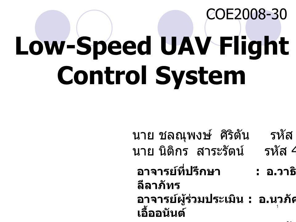 Low-Speed UAV Flight Control System