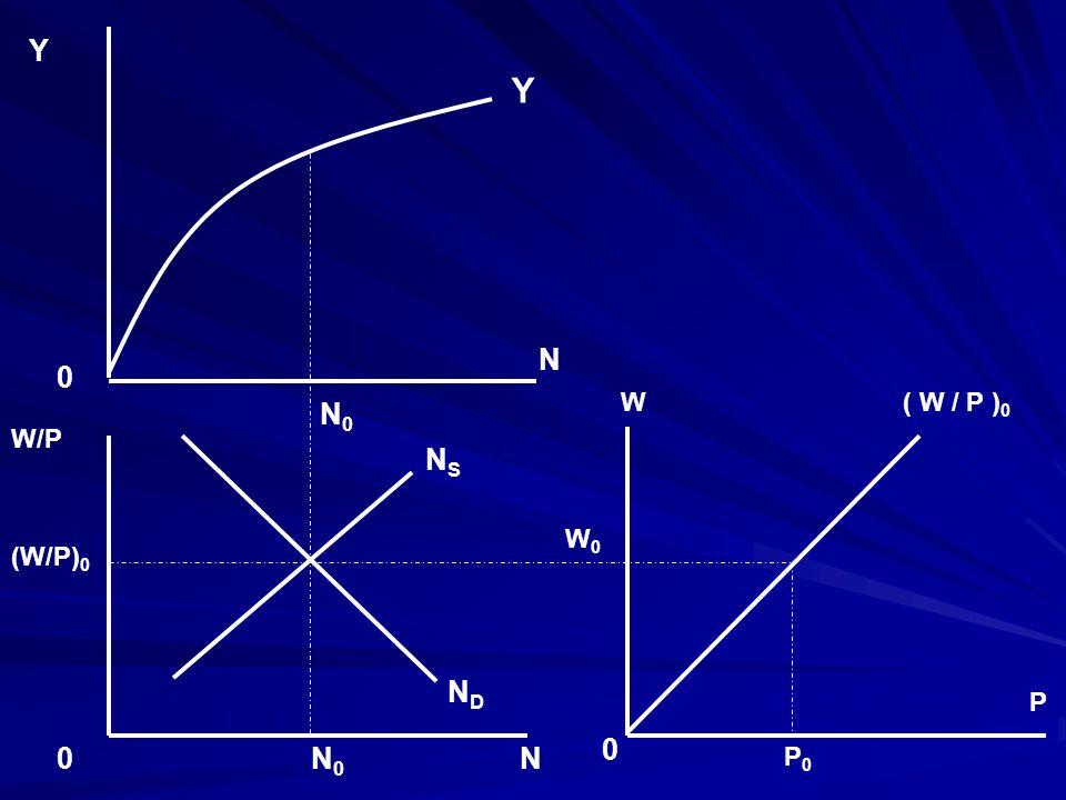 Y N W W/P N0 NS ND (W/P)0 P P0 W0 ( W / P )0