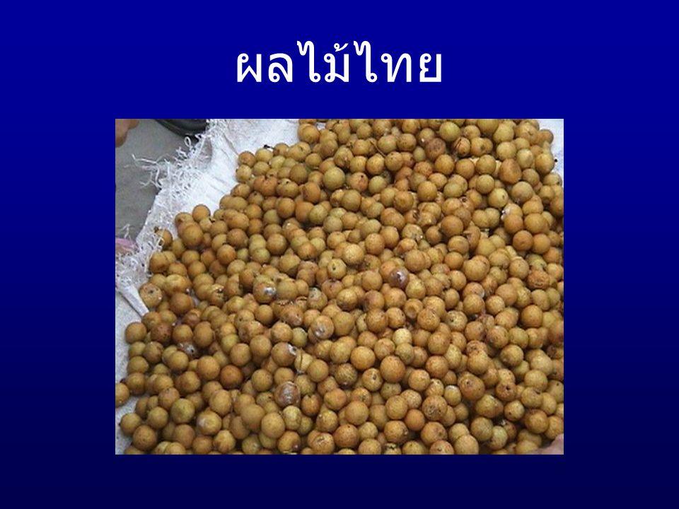 ผลไม้ไทย